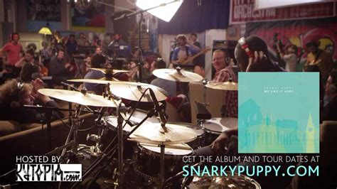 snarky puppy what about me snarky puppy what about me we like it here