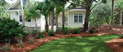 landscaping sc front yard landscaping 6 charleston plantworks