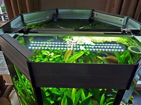 aquarien led beleuchtung led lichtleiste aquarium beleuchtung led lichtleisten