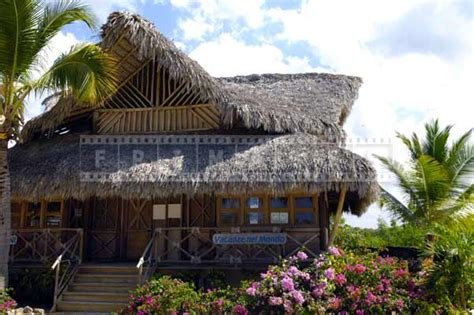 Palapa Roof Palapa Roof Related Keywords Suggestions Palapa Roof