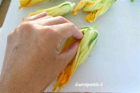 pulire fiori di zucca come pulire i fiori di zucca scuola di cucina
