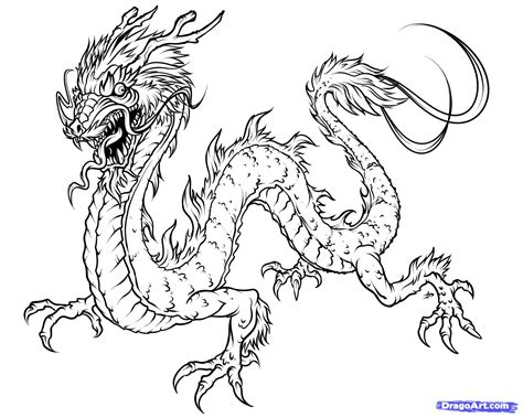 asian dragon coloring page how to draw a japanese dragon step by step dragons draw