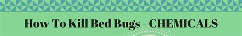 chemicals that kill bed bugs how to kill bed bugs 10 effective methods kill all bed