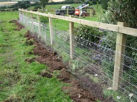 54 best images about ANIMAL PROOF GARDEN FENCING on