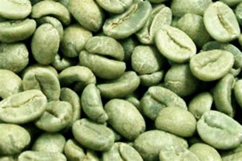 Green Coffee Bean green coffee get the inside scoop on the weight