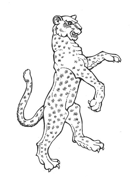 coloring books realm 4 44 grayscale coloring pages of fairies flowers elves butterflies animals warriors females and coloring books for adults volume 4 books leopard drawing by david burkart