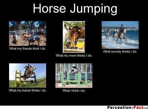 What I Do Meme - horse jumping what people think i do what i really