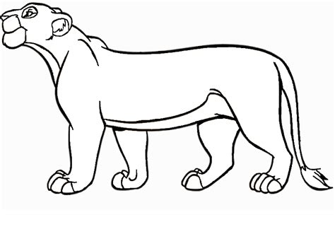 tlk lioness coloring coloring pages