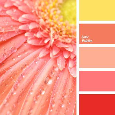 peach color schemes orange and peach color palette ideas