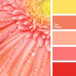 Pink Color Combination by Pink Monochrome Color Palette Color Palette Ideas