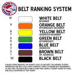 karate belt colors in order shotokan karate belts in order pictures to pin on