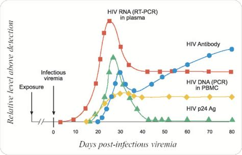 hiv 2 pcr test hiv diagnostic and molecular testing uw virology