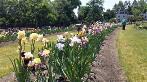 Presby Iris Garden presby iris gardens montclair nj 171 your complete guide to