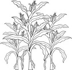 Corn Stalk Template by Free Printable Corn Stalks Fall Coloring Page For