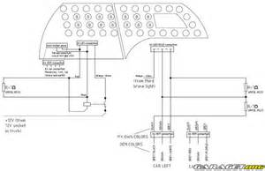 dolphin wiring diagram get free image about wiring diagram
