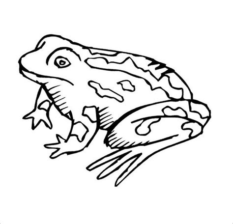 silly frog coloring page frog template animal templates free premium templates