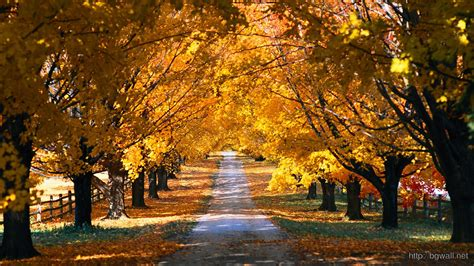 Cool Car Wallpapers 1366 78045 County by Country Road In The Fall Wallpaper 11542 Background