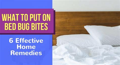 put  bed bug bites  effective home remedies