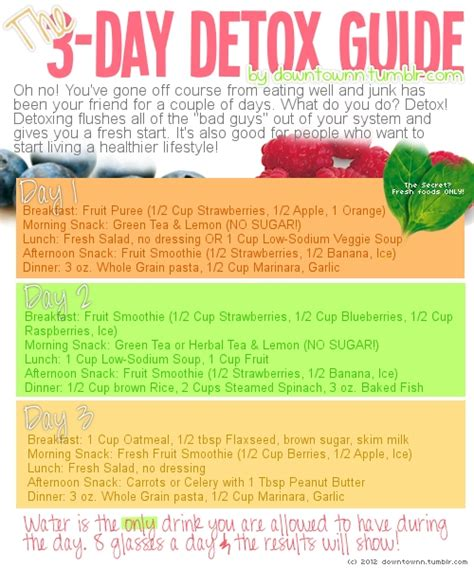 Detox Diet Plan For Weight Loss For One Week by 3 Day Detox Guide Say Yes To Happy