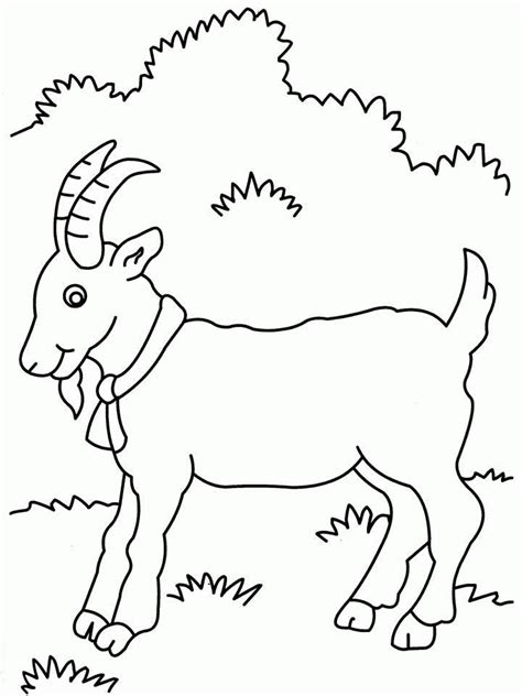coloring pages of goat cute goat coloring pages coloring home