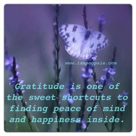 the gratitude journal for find happiness and peace in 5 minutes a day books gratitude is one of the sweet shortcut to finding peace of