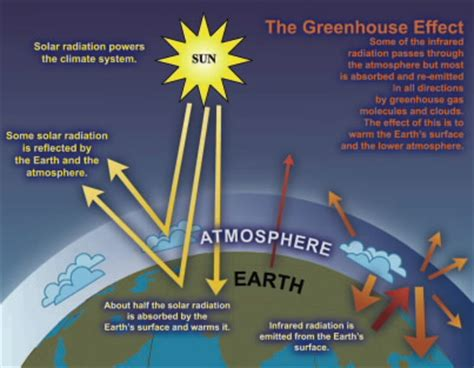 green house gasses opinions on greenhouse gas