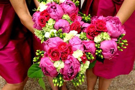 begonia color 17 best ideas about begonia wedding colors on