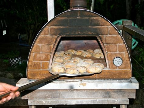 woodfired pizza oven tyes home ideas collection woodfired pizza oven how to build yours