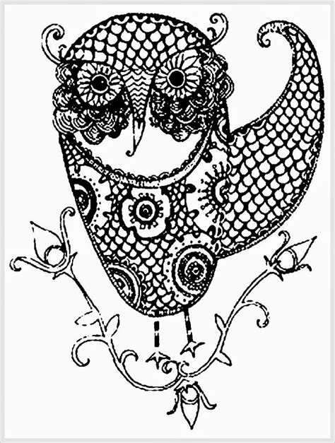 owl feather coloring pages