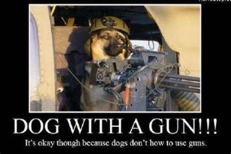 gun names for dogs gundogs and chickens pprune forums