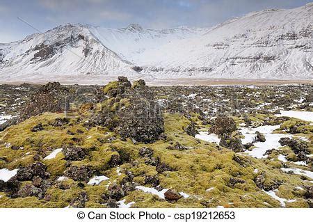 fotos islandia invierno stock im 225 genes de viejo lava overgrown musgos invierno