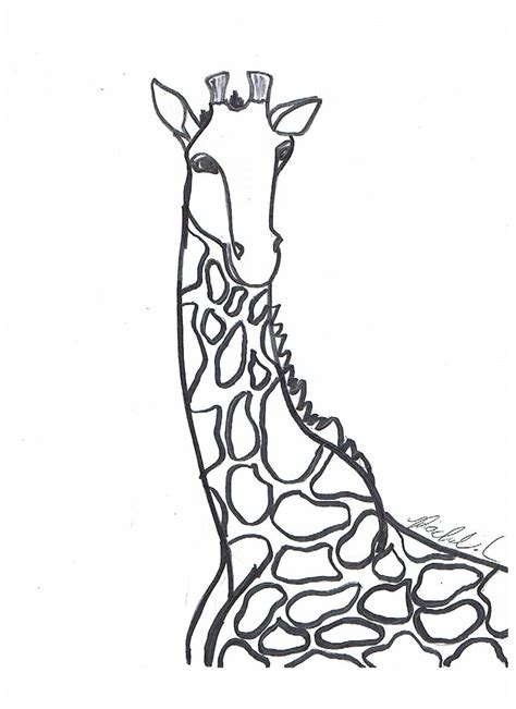 Free Printable Giraffe Coloring Pages For Kids Giraffe Coloring Pages Printable