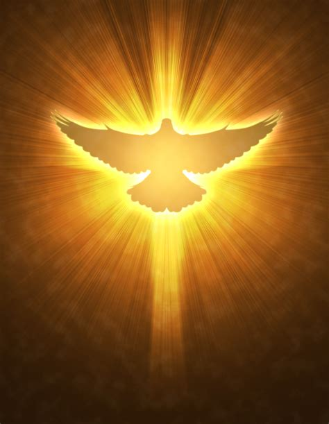 Catholic Home Decor by Pin Holy Spirit Dove On Pinterest