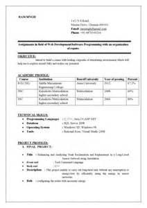 best 25 resume format ideas on cv