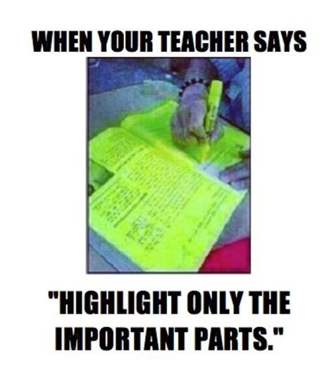 school memes 101 teaching who am i and highlights