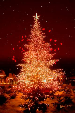 amazing christmas tree gifs  share  animations