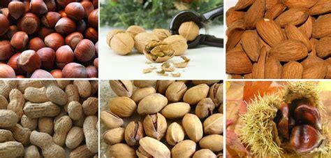 fitosteroli alimenti 187 steroli vegetali in quali alimenti