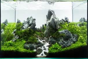 nature aquascape the nature style planted tank aquascape awards