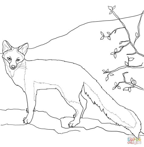 fox coloring book page adult pages fox coloring page for