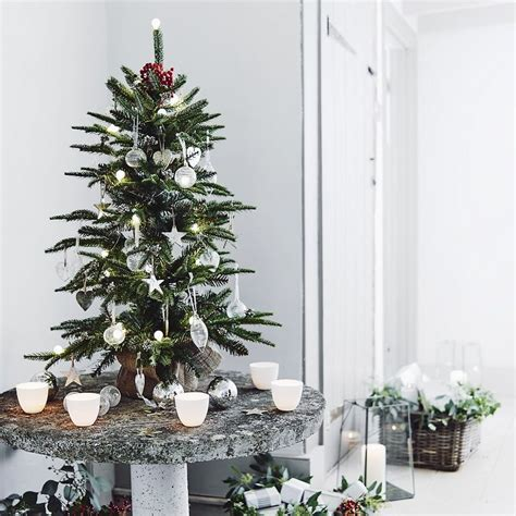 fir christmas tree 3ft the white company shopping