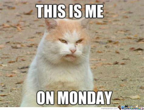 Memes About Monday - image gallery monday meme
