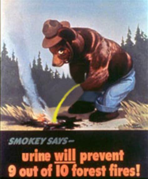 Smokey The Bear Meme - image 764913 smokey the bear know your meme