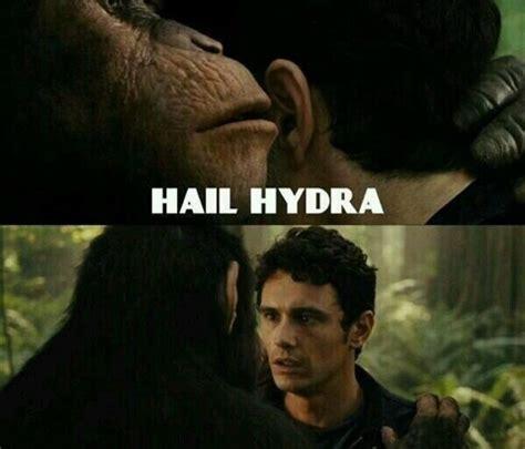 Hail Meme - best of hail hydra the new marvel meme sweeping the