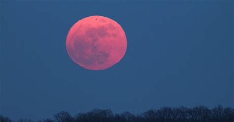 pink moon april 2017 when is the pink moon in april 2017 and what is the meaning of its name metro news