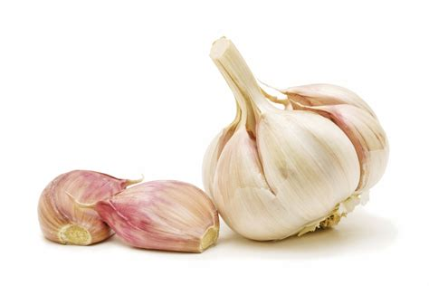 is garlic poisonous to dogs garlic and dogs garlic and cats is garlic bad for dogs
