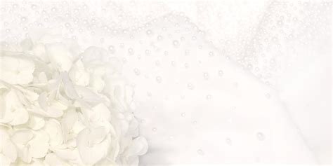 Wedding Background by White Wedding Background Wedding Dresses Dressesss