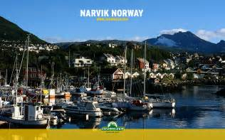 Narvik wallpapers and images wallpapers pictures photos