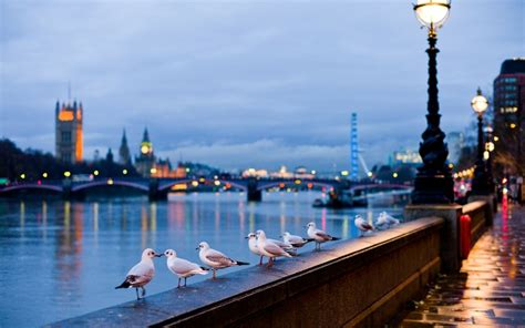 thames river towns traveling in london europe architecture interior design
