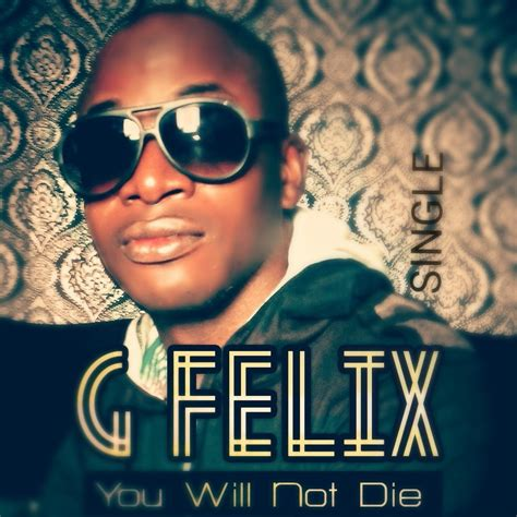 new year song radio new song for the new year titled u will not die