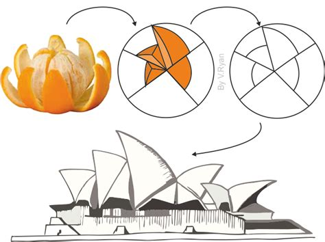 sydney opera house diagram sydney opera house inspired by nature